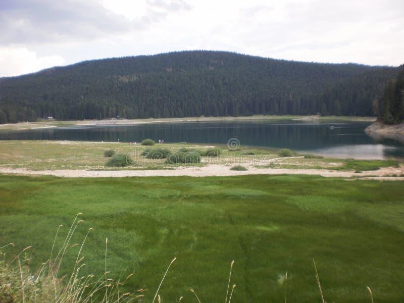 Zielone pastwiska i jeziora oraz gęsto zalesione wzgórza fotografia royalty free