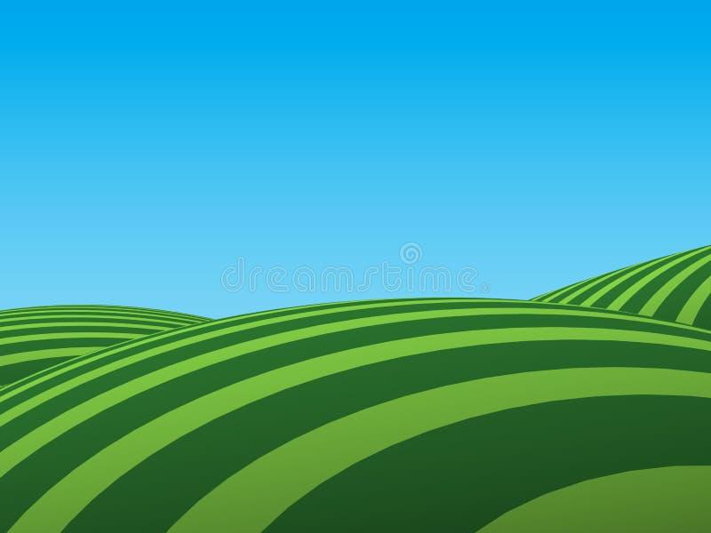zielone pola ilustracji