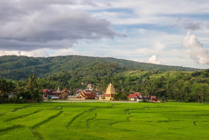 Zielone pole z Wat Sri Pho Chai, tło gór i niebieskie niebo na Haeo, Loei, Tajlandia obrazy royalty free