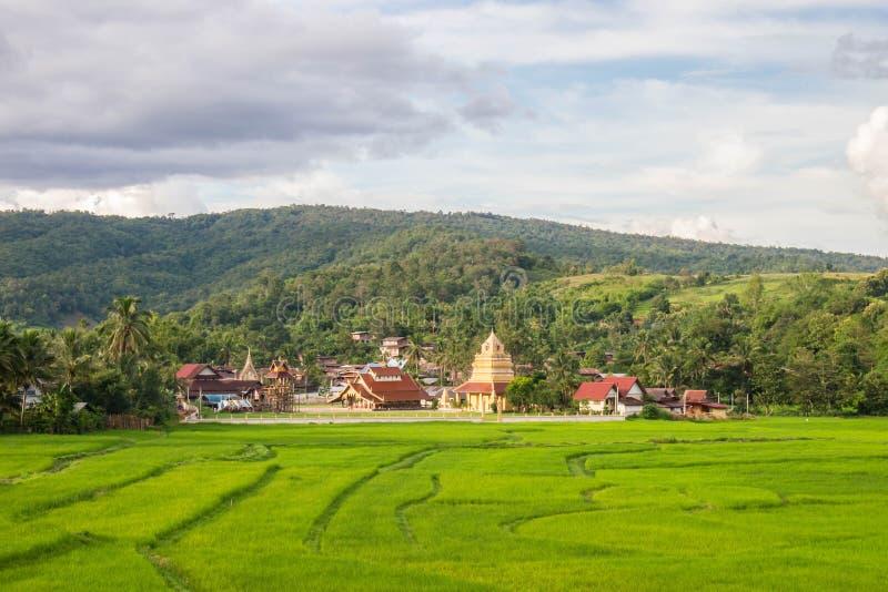 Zielone pole z Wat Sri Pho Chai, tło gór i niebieskie niebo na Haeo, Loei, Tajlandia obraz stock