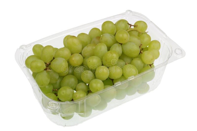 Zielone słodkie winogrono jagody w jasnym plastikowym zbiorniku odizolowywali makro- obrazy stock