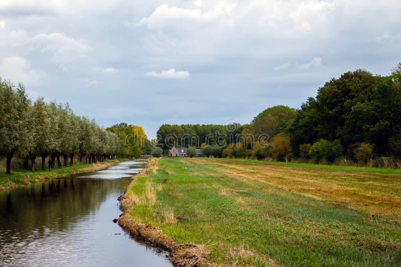 Zielone serce Holandii zdjęcia royalty free