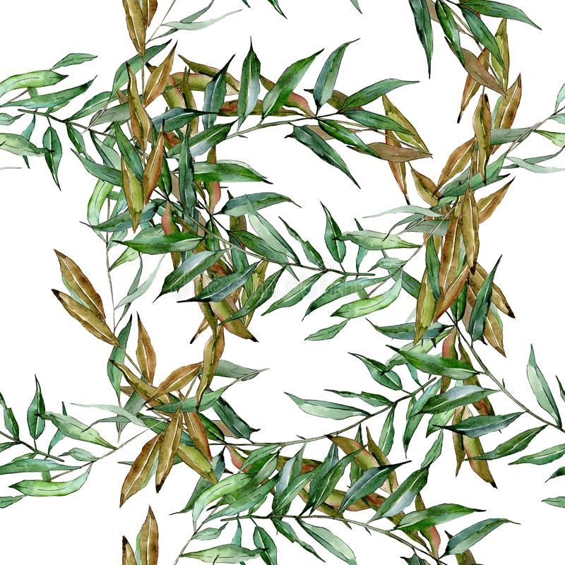 Zielone wierzb gałąź Akwareli t?a ilustracji set Bezszwowy t?o wz?r ilustracja wektor