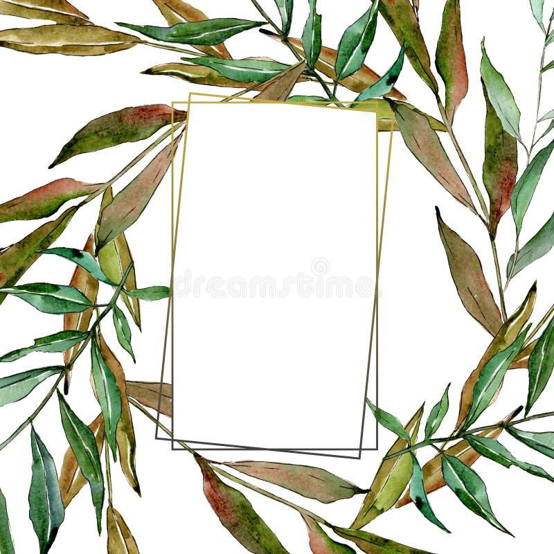 Zielone wierzb gałąź Akwareli t?a ilustracji set Ramowy rabatowy ornamentu kwadrat ilustracji
