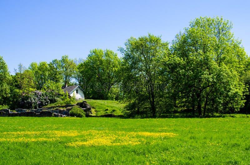 zielonego domu łąkowy biel obraz stock
