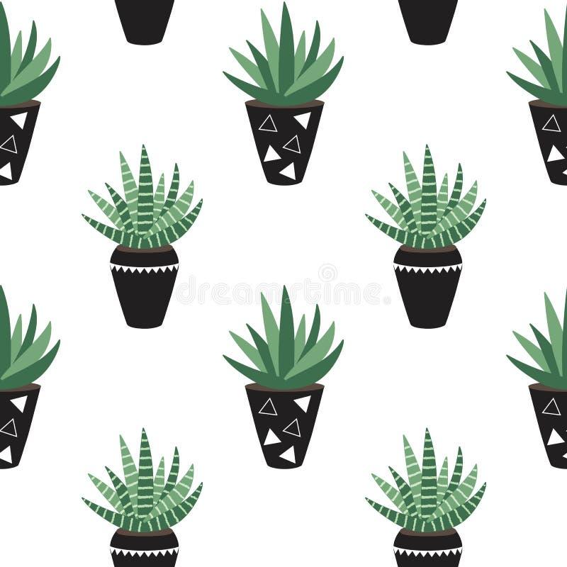 Zielonego domu rośliny w czerni puszkują sansevieria scandinavian st royalty ilustracja