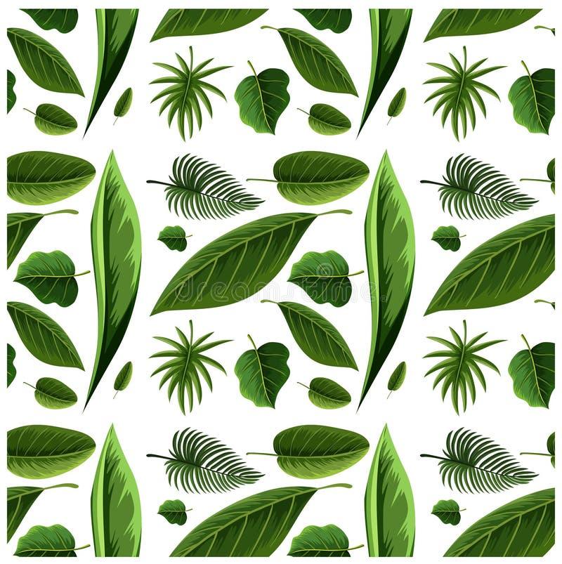 Zielonego Drzewnego liścia Bezszwowa tapeta royalty ilustracja