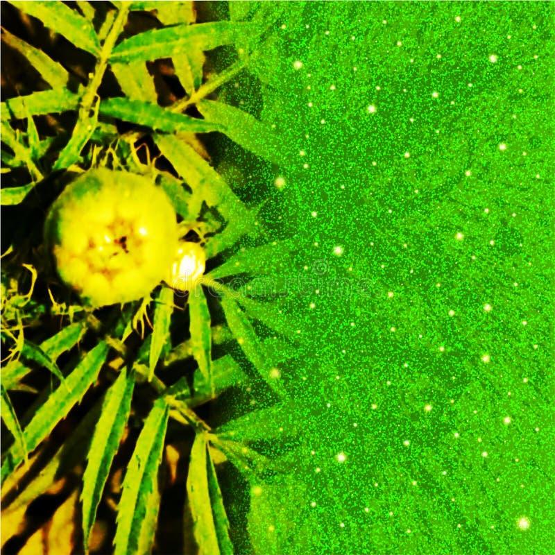 Zielonego koloru dorośnięcia kwiat z błyskotliwość skutka tła komputer wytwarzającym wizerunkiem i tapetowym projektem ilustracji