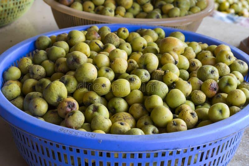 Zielonego kraba jabłko Tao Meo w wietnamczyku sławna dzika owoc w górzystym regionie w Wietnam, używać stawiać w białym winie dla obraz royalty free