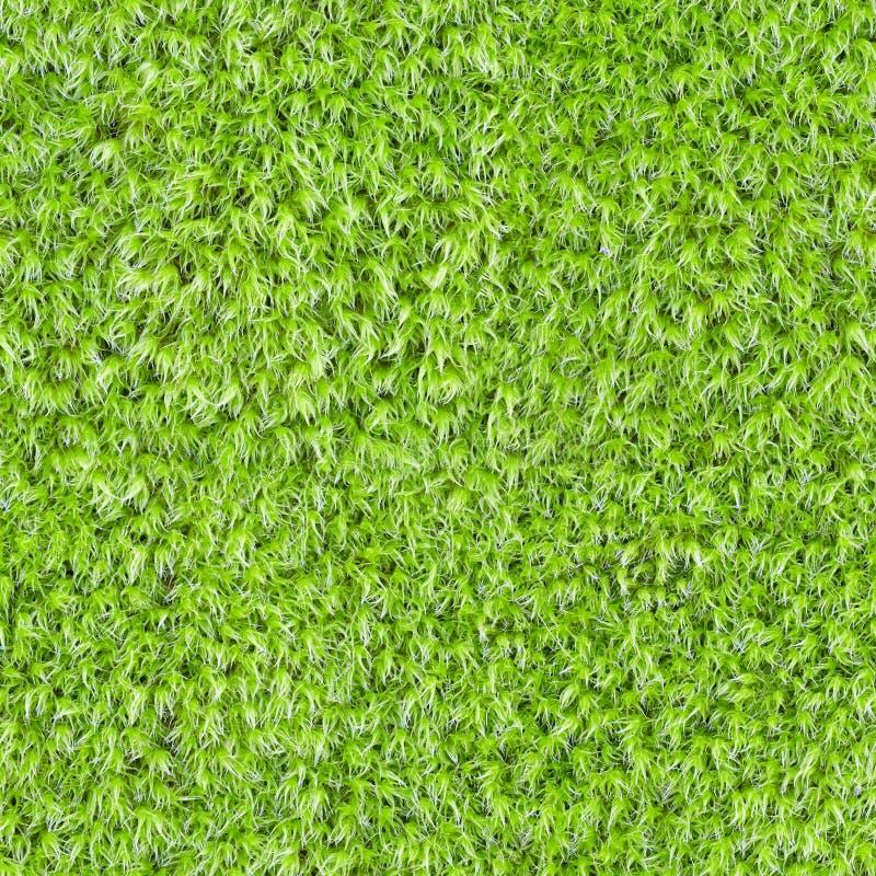 zielonego mech bezszwowa kwadratowa tekstura fotografia stock