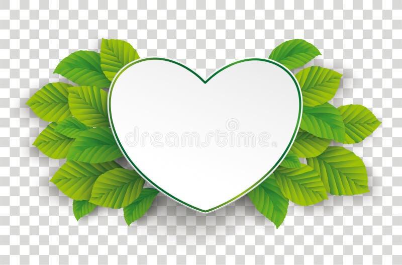 Zielonego papieru serca zieleni buk Opuszcza Przejrzysty ilustracja wektor