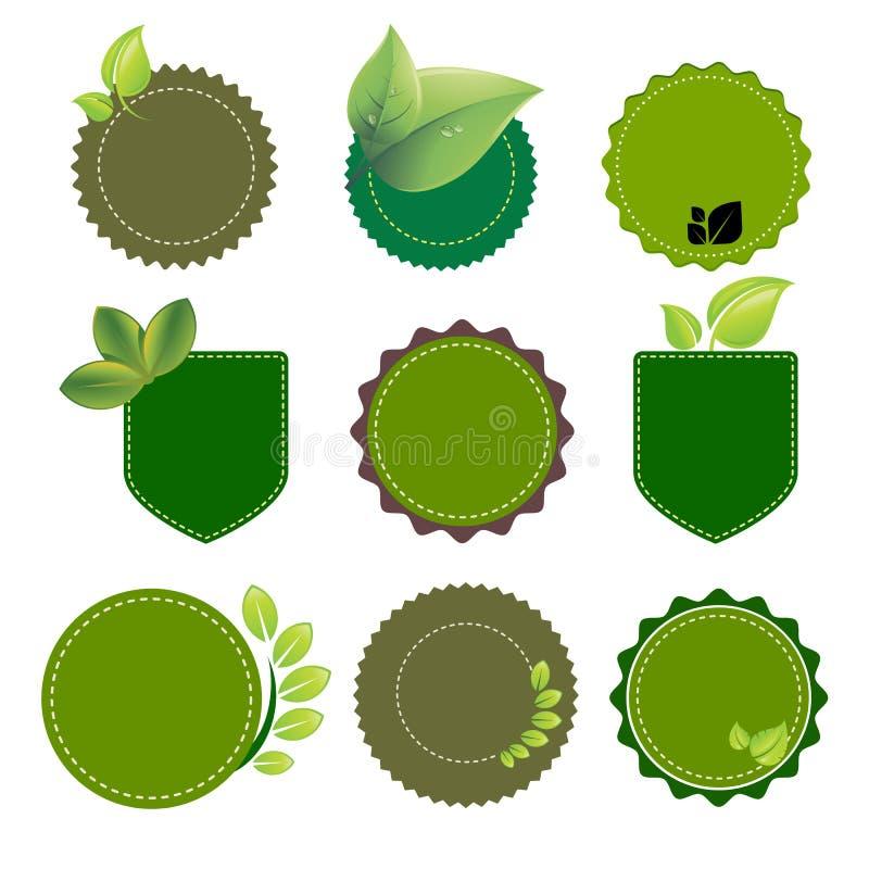 Zielonego tła natury czysty eco ilustracji