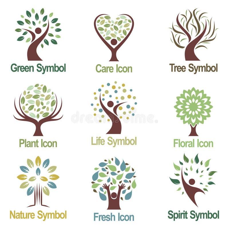 Zielonej Abstrakcjonistycznej rośliny natury logo ikony Drzewna kolekcja ilustracja wektor