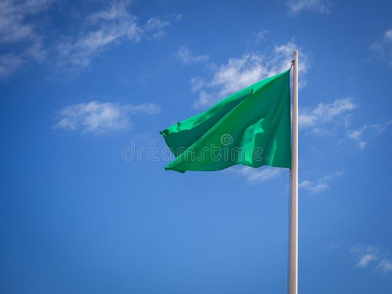 Zielonej flagi odosobniony falowanie zdjęcie royalty free