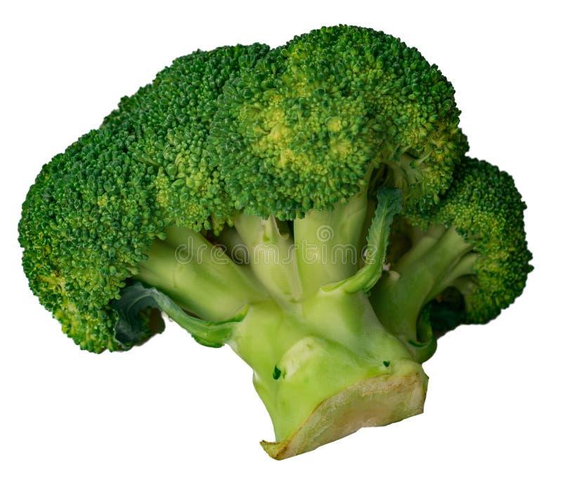 Zielonej kapusty brokuły odizolowywający na białym tle fotografia royalty free