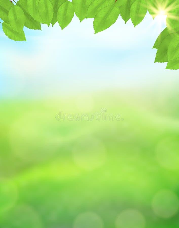 Zielonej natury pionowo tło z liśćmi na zamazanym tle trawy, nieba, światła słonecznego i bokeh skutek, Widok z kopią royalty ilustracja