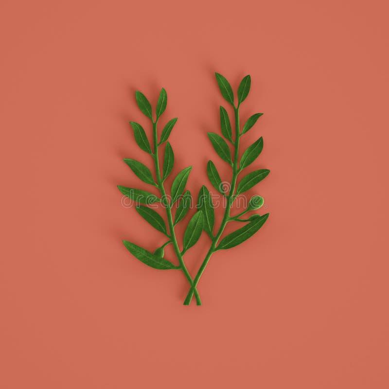 Zielonej oliwki branche rzeźba na pastelowym czerwonym tle ?wiadczenia 3 d zdjęcia royalty free