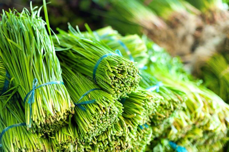 Zielonej sałatki zdrowy karmowy tło obraz royalty free