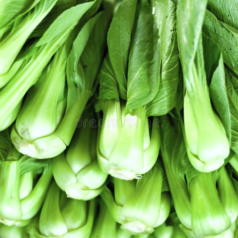Zielonej sałatki zdrowy karmowy tło Warzywa na miejscowego rynku zdjęcie royalty free