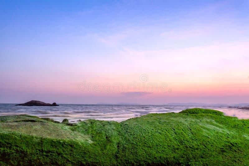 Zielonej trawy natury t?a nieba denny krajobraz zdjęcie stock
