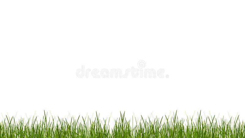 Zielonej trawy ostrza trawa łąkowy gazon 3d-illustration royalty ilustracja