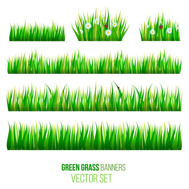 Zielonej trawy sztandarów wektoru set ilustracji