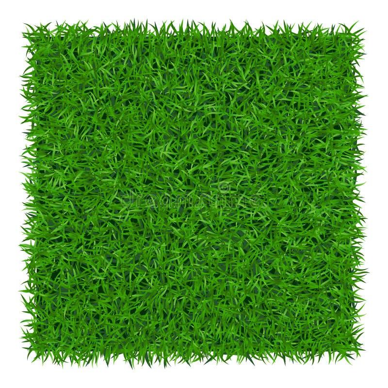 Zielonej trawy tło 1 ilustracja wektor