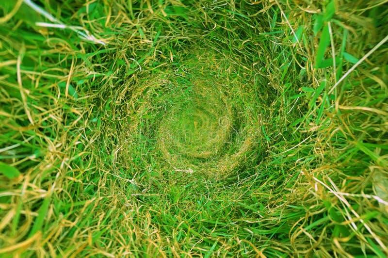 Zielonej trawy tekstura i tło centralizacji kółkowy kształt obraz stock