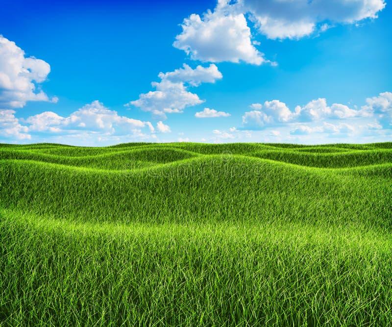 Zielonej trawy wzgórza i niebieskie niebo krajobraz ilustracji