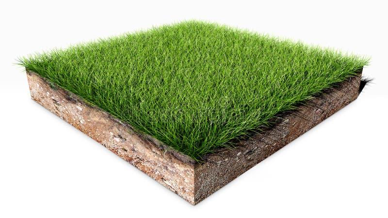 Zielonej trawy ziemi kawałek ilustracji