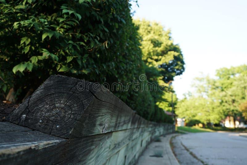 Zielony żywopłot z Drewnianym ogrodzeniem wzdłuż drogi zdjęcie royalty free