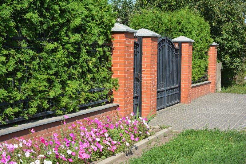 Zielony żywopłotu ogrodzenie z cegłą, metal brama i drzwi i Żywy fechtunek fotografia stock