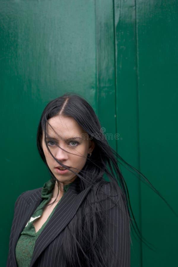 - zielony zdjęcia stock