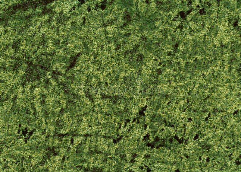 zielony aksamit zdjęcia royalty free