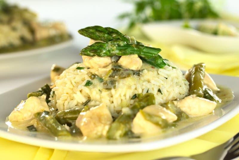Zielony asparagusa i kurczaka Fricassee obrazy stock