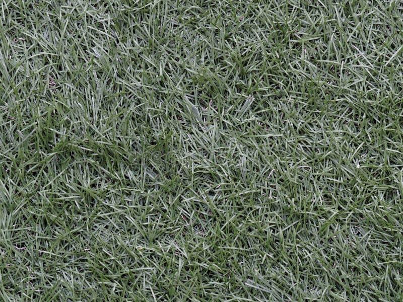 Zielony astroturf dla piłki nożnej używać jako tło w sporta pojęciu zdjęcia royalty free