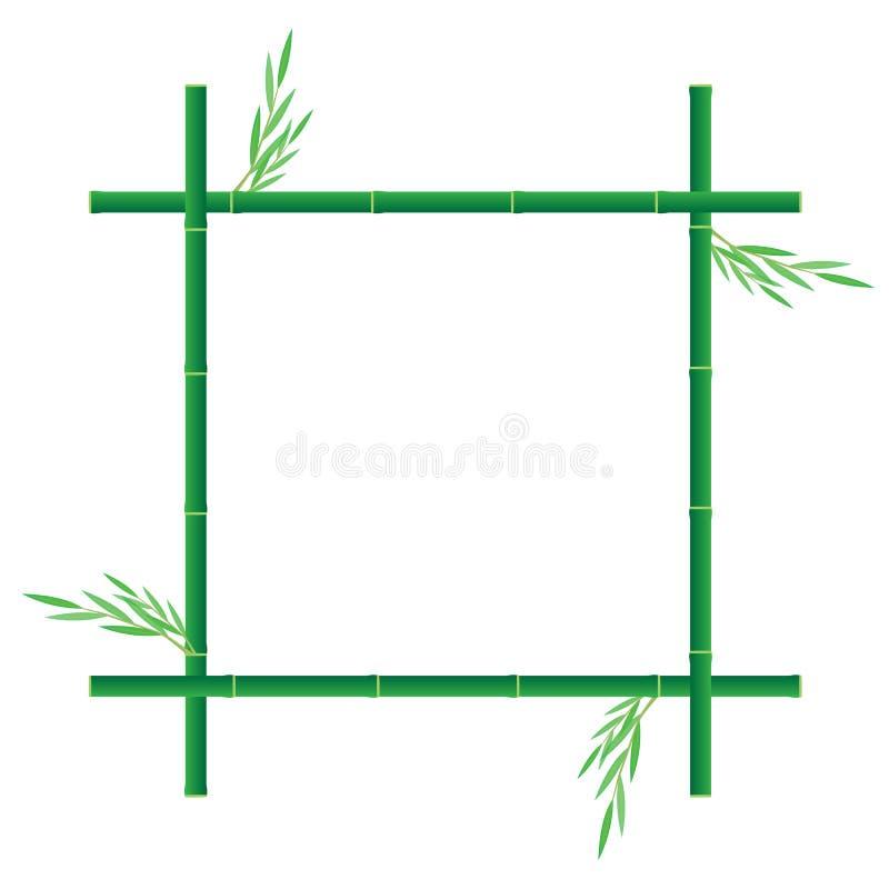 Zielony bambus ilustracji