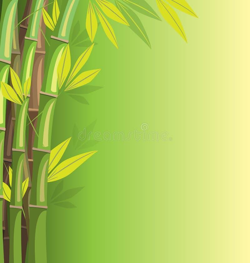 Zielony bambus na zielonym tle ilustracji