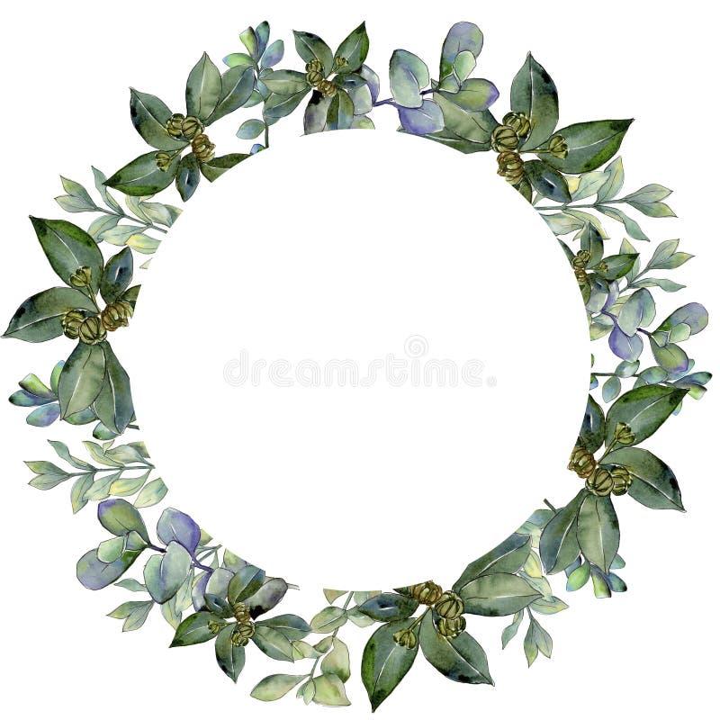 Zielony boxwood liść Liść rośliny ogródu botanicznego kwiecisty ulistnienie Ramowy rabatowy ornamentu kwadrat royalty ilustracja