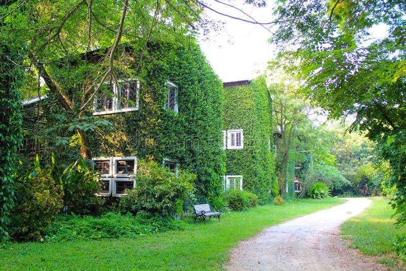 Zielony Buiding zdjęcie royalty free