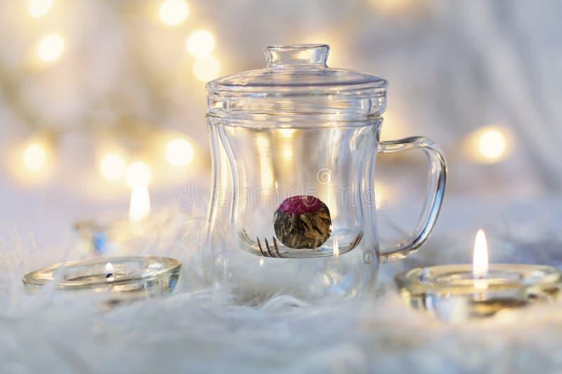 Zielony chiński herbaciany kwiatu pączka kwitnienie w szklanej herbacianej filiżance na bokeh tle zdjęcia royalty free