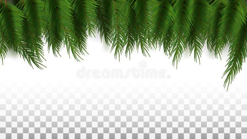 Zielony choinki tła szablon Gotowy Dla teksta fotografia stock