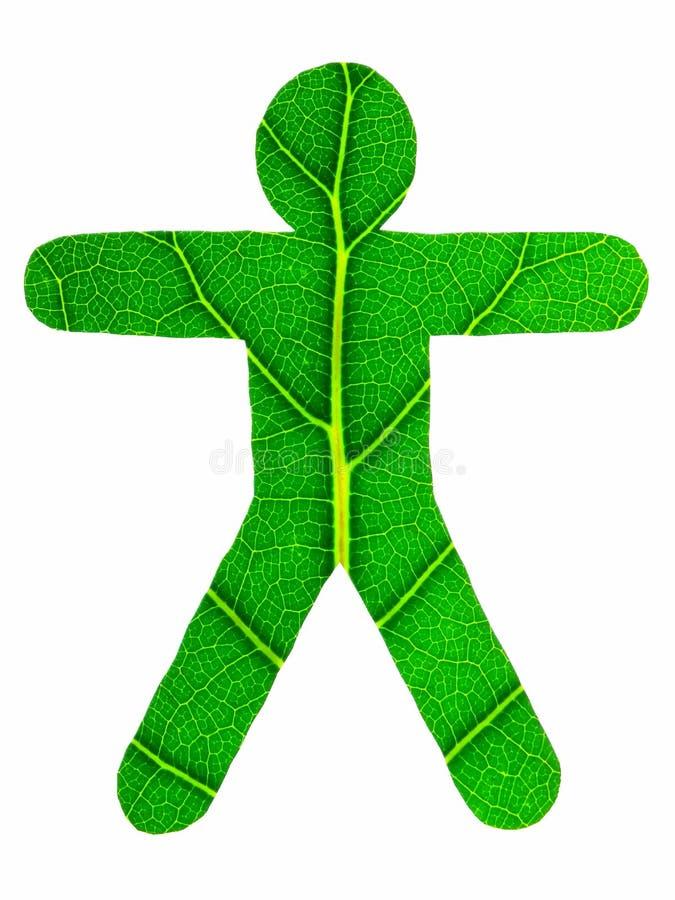 zielony człowiek zdjęcia stock
