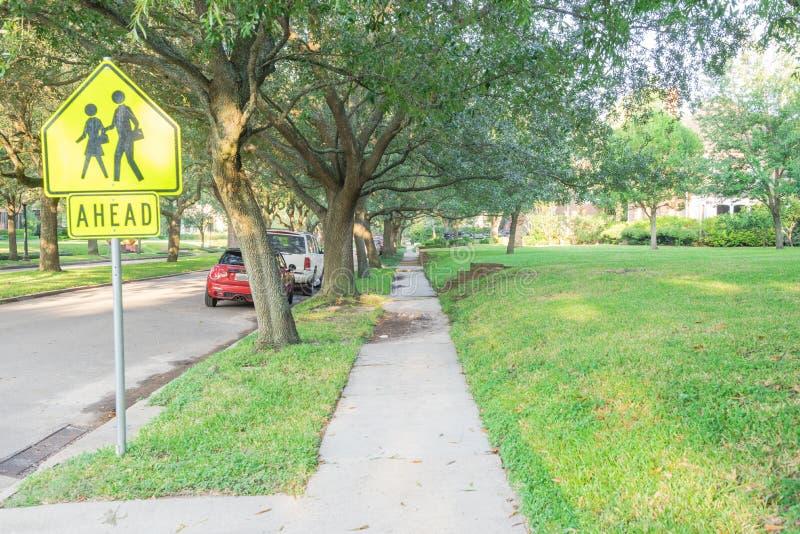 Zielony dębowego drzewa Houston środka miasta sąsiedztwo fotografia stock