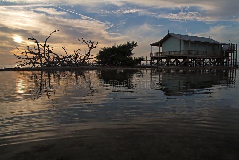 zielony dom ryb obrazy stock