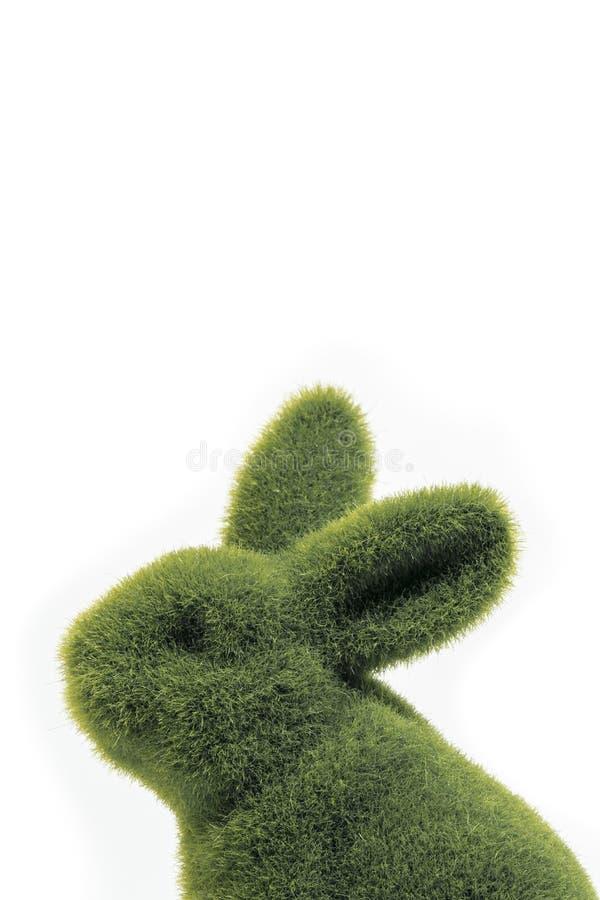 Zielony Easter królika zakończenie w górę zdjęcie royalty free
