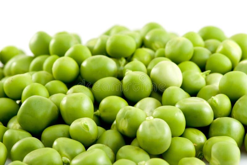 zielony groszek pojedyncze tło białe zdjęcia stock