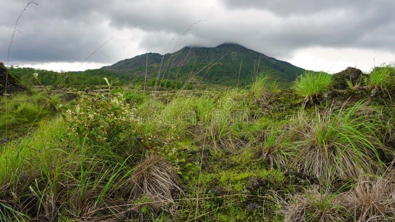 Zielony i świeży widok góra Batur w porze deszczowej pod ponurym niebem chmurnieje Kintamani, Bali, Indonezja obraz royalty free