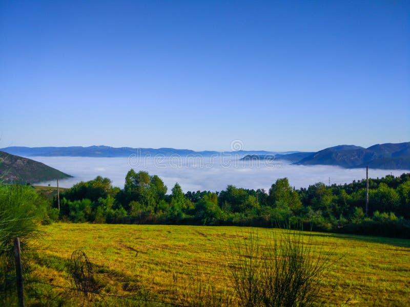Zielony i żółty trawy pole nad chmurami z górami przy, fotografia stock