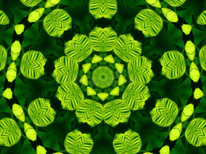 Zielony i Czarny liścia kalejdoskop obraz royalty free